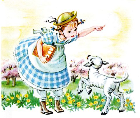 Mary had a little lamb square