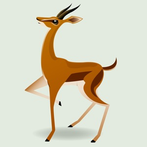 The Amazing Gazelle