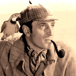 holmes and parrot