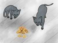 Two Cats stalk gold