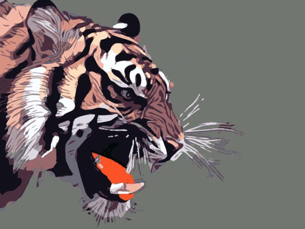 The Tiger Who Had No Manners
